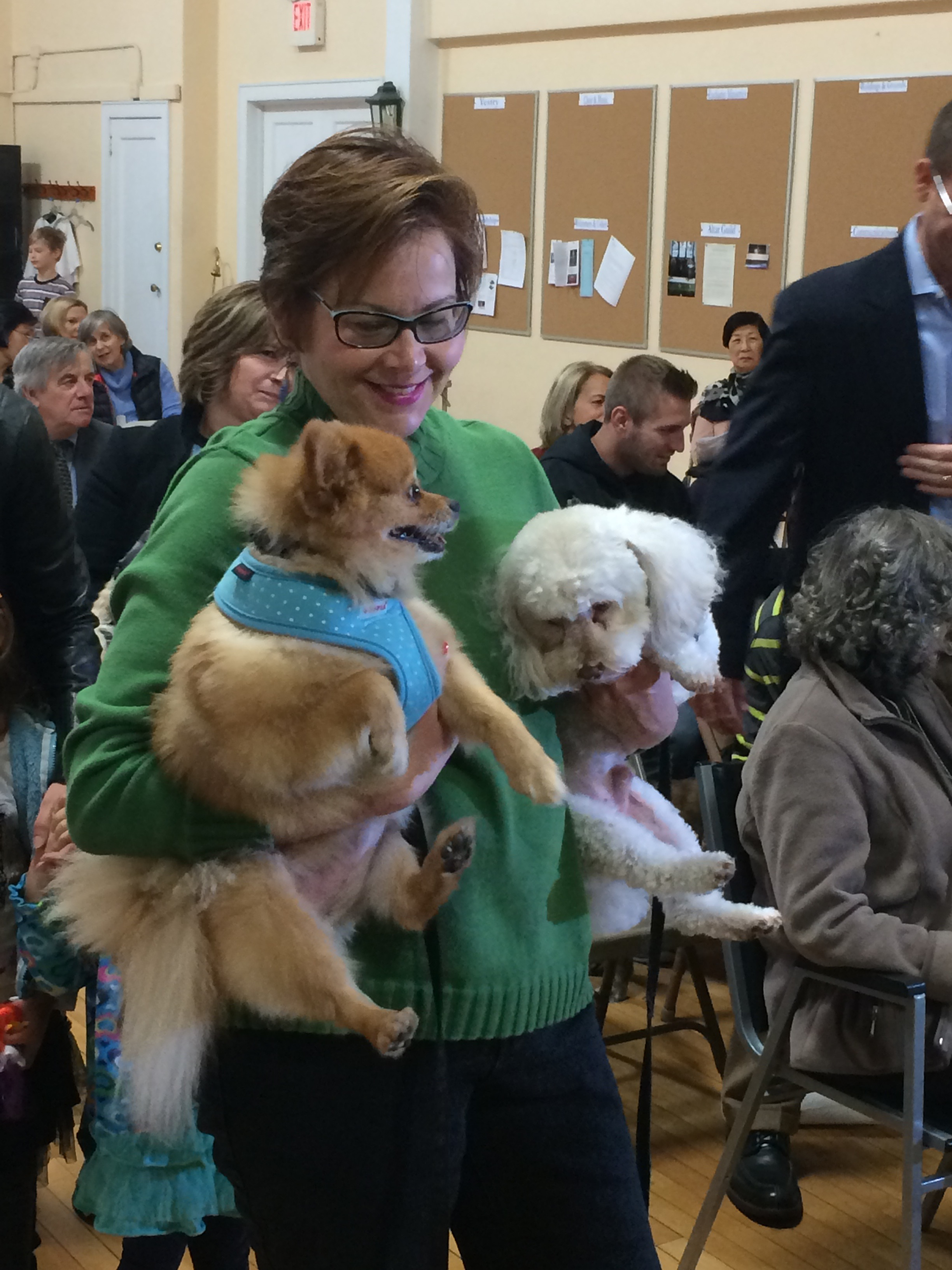Pet blessing 2015 Elisa Delaney